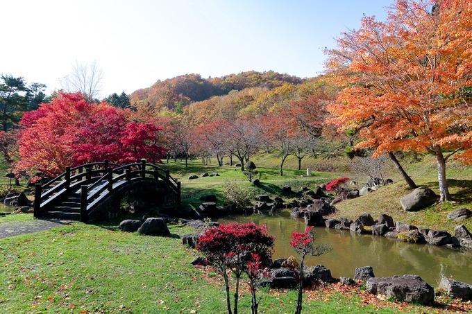 函館の水がめの紅葉もきれい