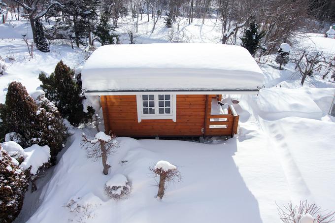 大雪でも春の準備をしなくては・・・