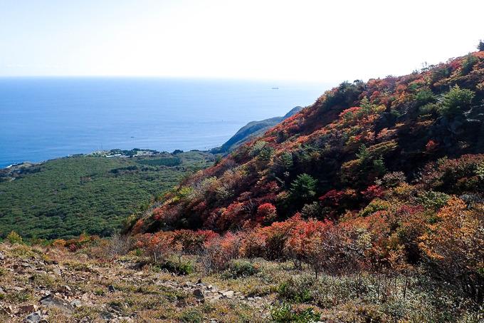 紅葉の恵山、海向山をひと巡り