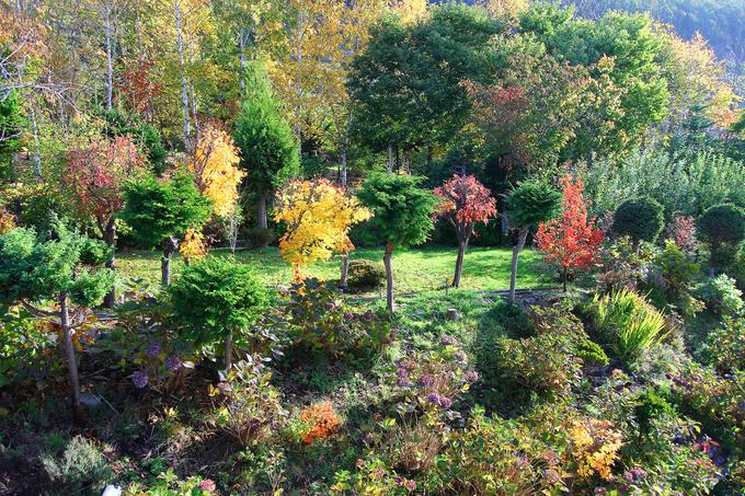 秋は一段と深まって