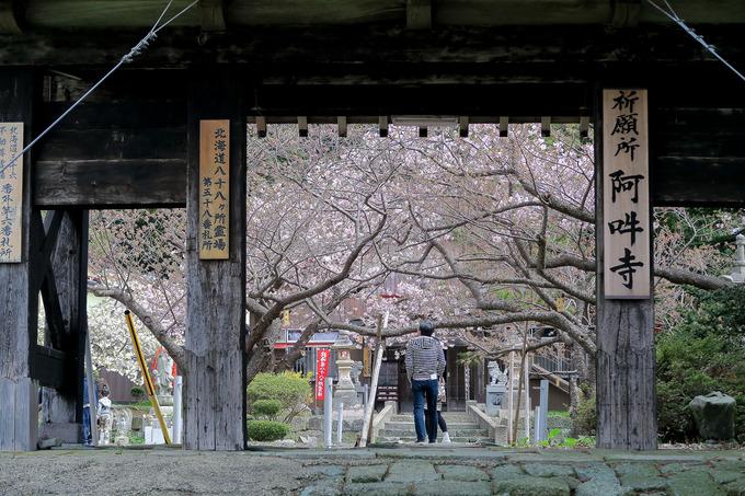 松前の寺町を歩く