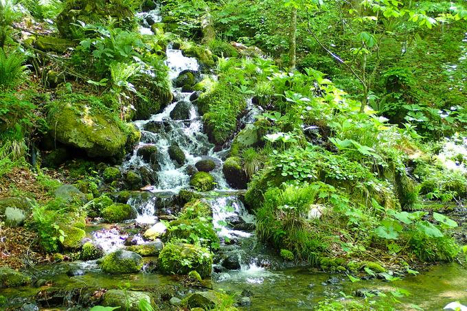 奥入瀬渓流散策 ②石ヶ戸~銚子大滝