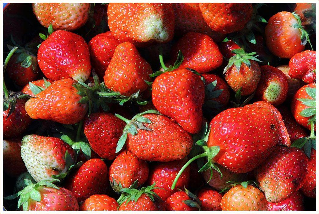野性味いっぱいのイチゴ
