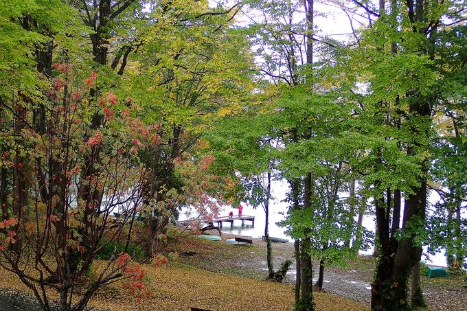 紅葉真っ盛りの十和田湖