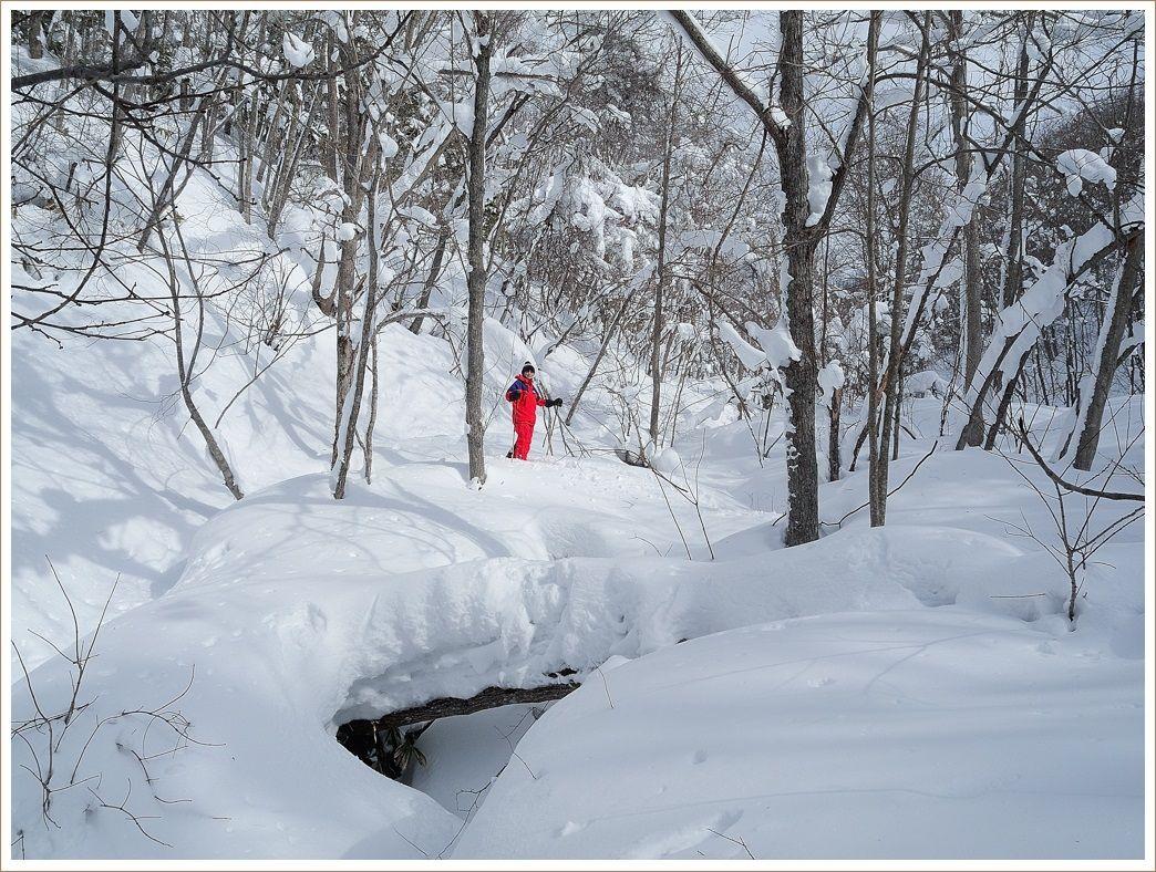 深い雪と強い風に喘ぎながら