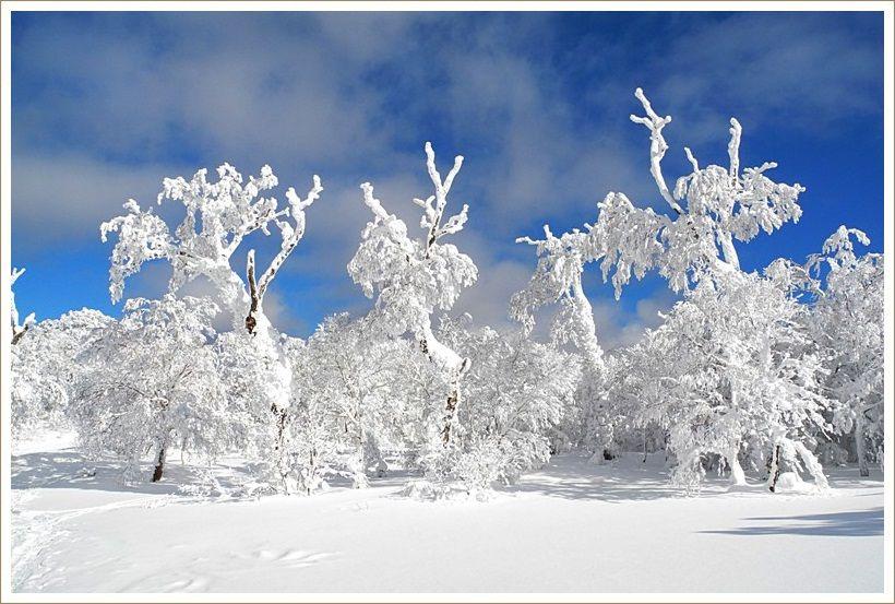 雪景色に音楽を感じて