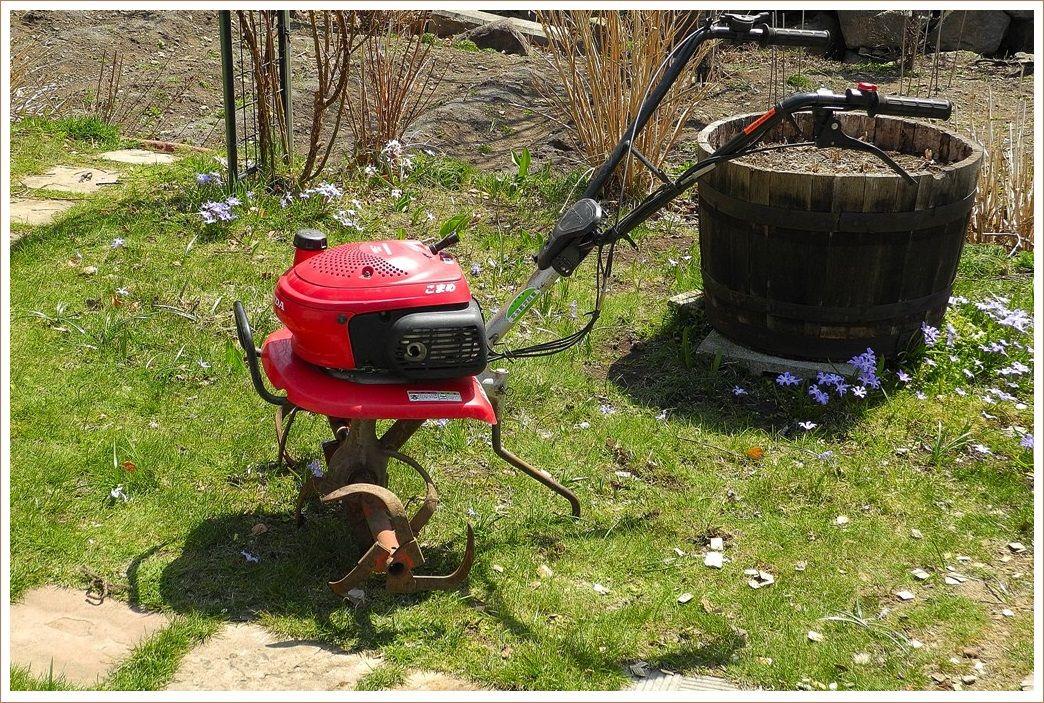さあ、菜園の開始です