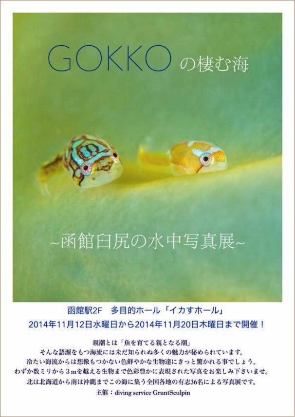 「GOKKOの棲む海」 水中写真展