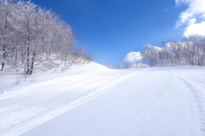 豪雪も少しは楽しまなくては・・・