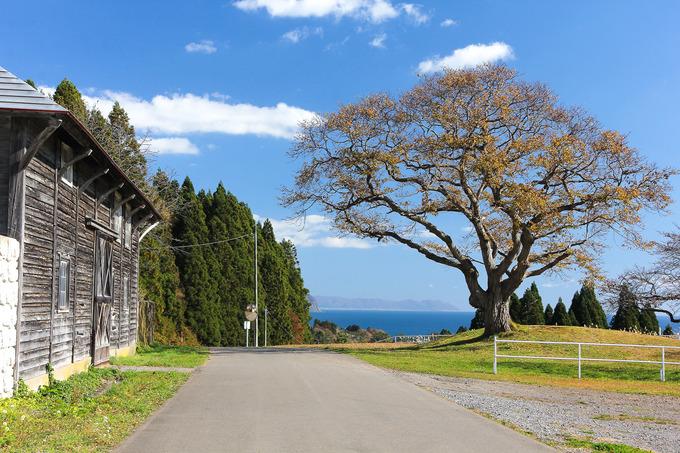 函館近郊イチオシの景色