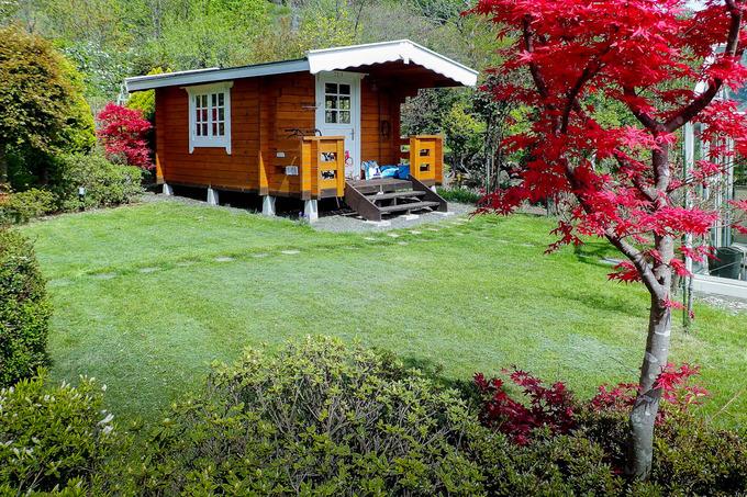 今年最初の芝刈り