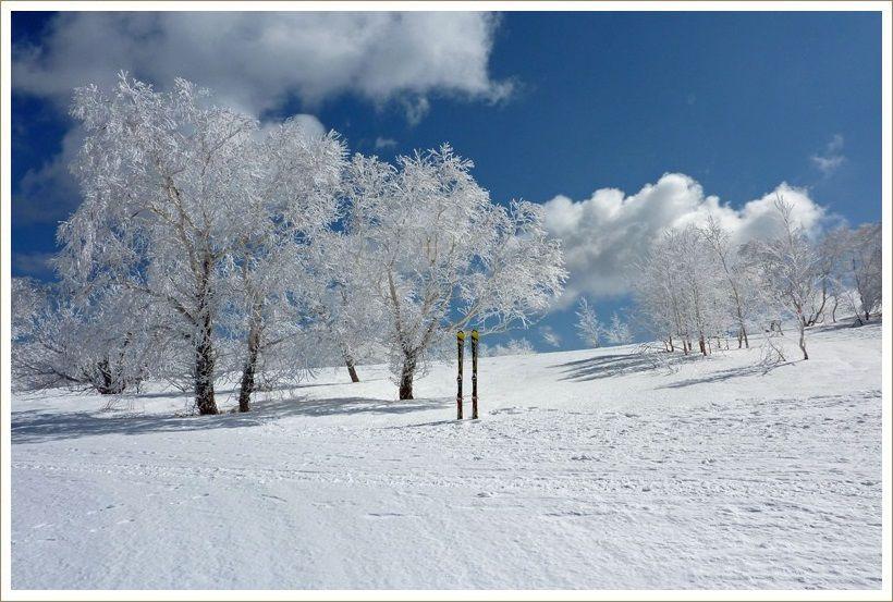 目標の30回到達 ski