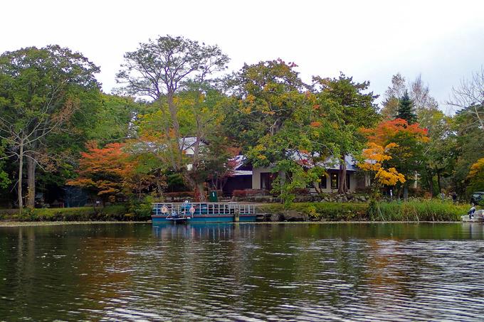 紅葉に彩られた大沼を漕ぐ
