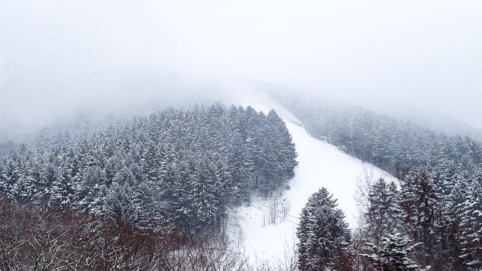 こんな視界不良にスキーかよ