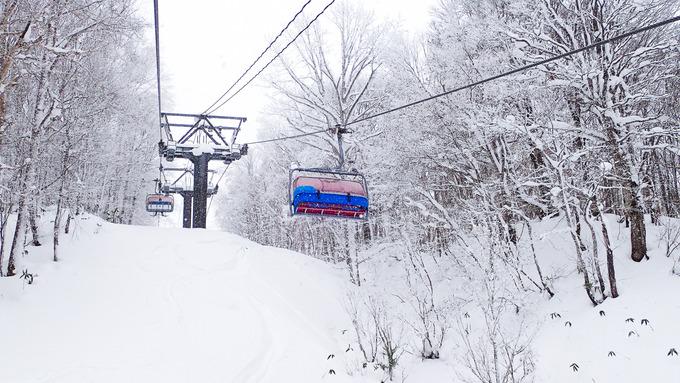 new year ski