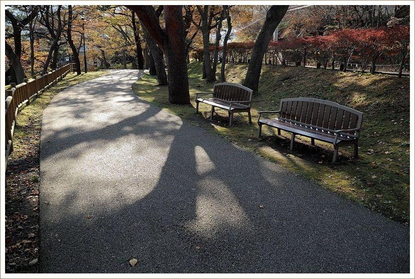 束の間の小春日和 ・・函館公園