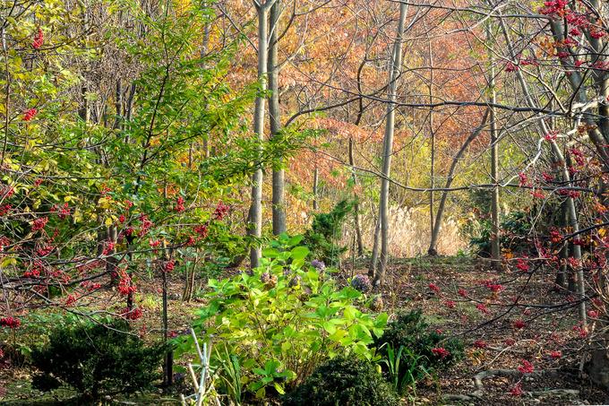 山の麓は秋色に染まって