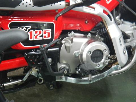 DSCN6632
