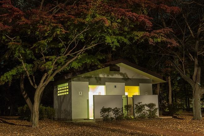 ... 真夜中の武蔵野公園で紅葉でも