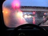 雨中のキャトル
