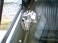 フロントガラスのヒビ