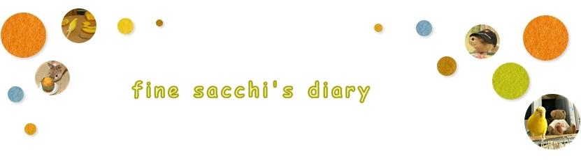 fine sacchi's diary