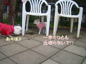 駒沢公園3