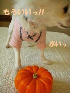 ハロウィン7