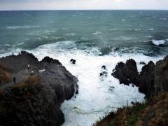 東尋坊の崖で「はよ落ちろ」…飛び降り強要、少年ら7人再逮捕
