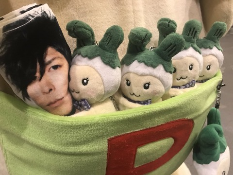 【SID】2018年06月28日 東京都 豊洲PIT(インディーズ限定2日目)