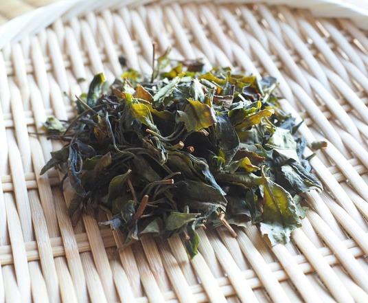 茶摘み (5)