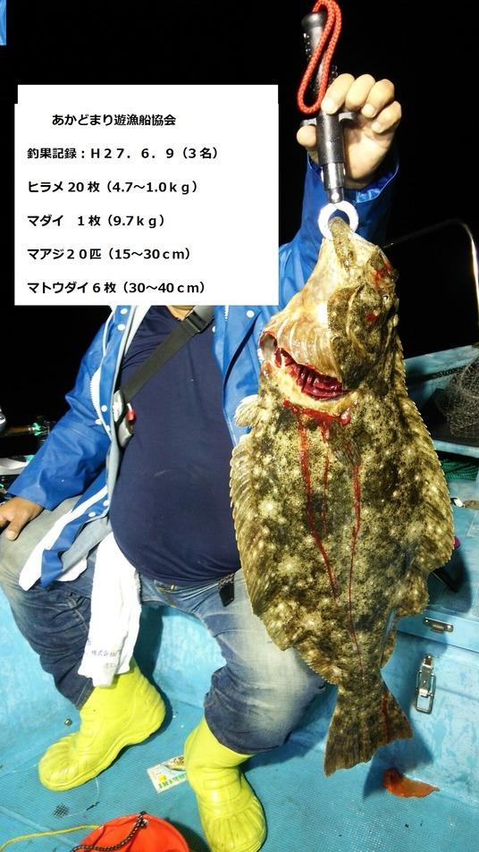09ヒラメ