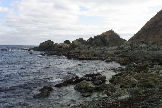 海苔摘み①