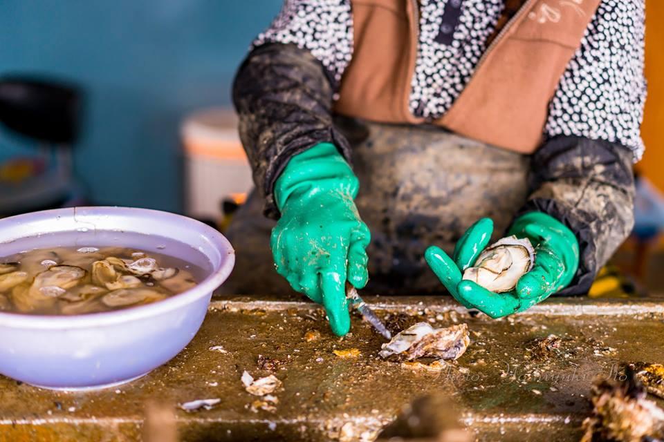 加茂湖の牡蠣殻剥き