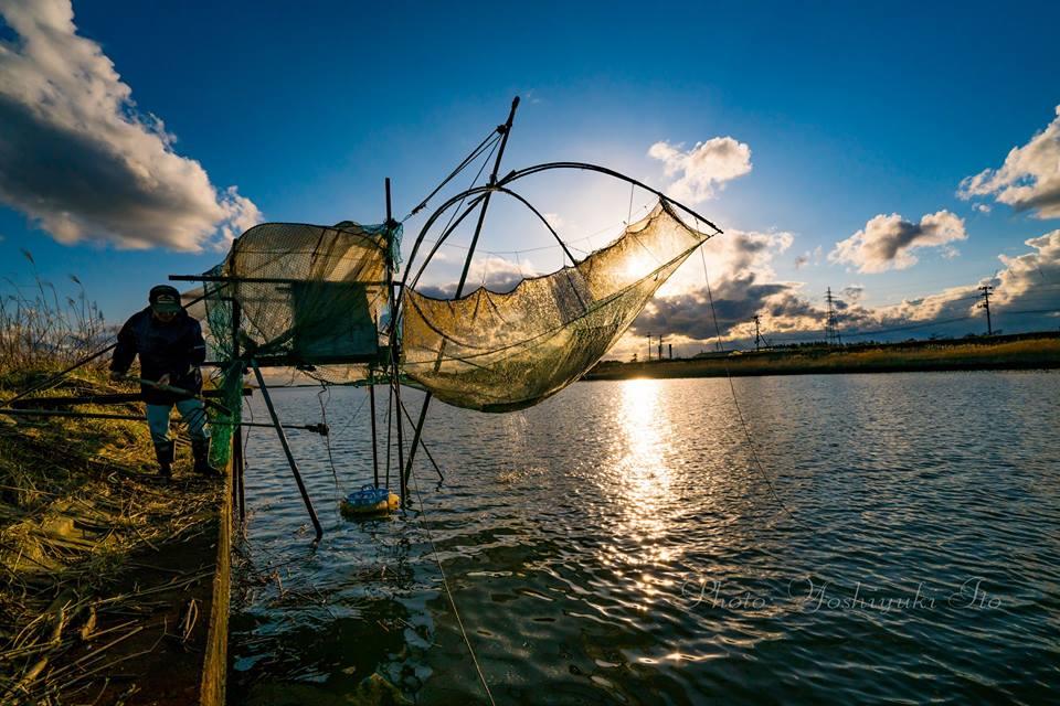 シロウオ漁 すくい網漁