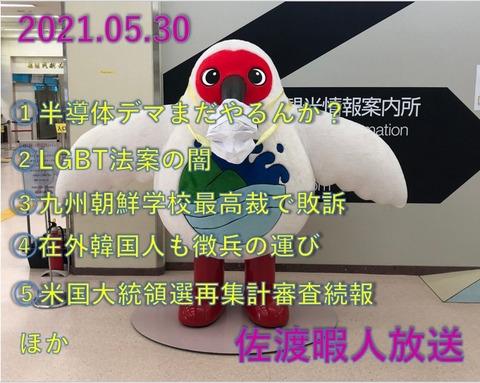 SnapCrab_NoName_2021-5-31_8-44-24_No-00