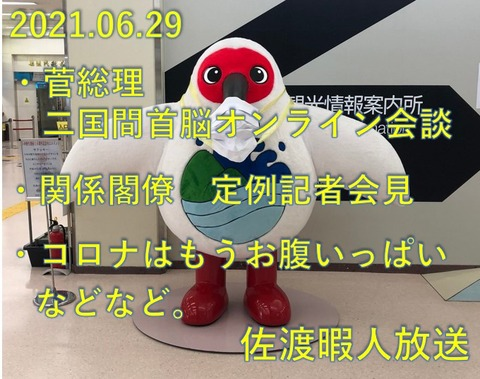 SnapCrab_NoName_2021-6-30_8-59-51_No-00