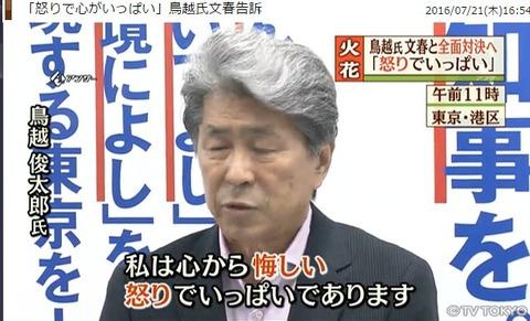 torigoekuyashii1