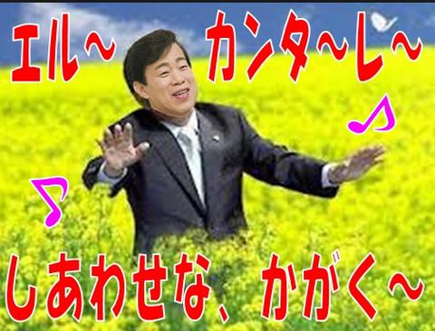 ookawaryuhou1