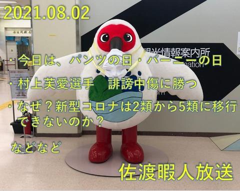 SnapCrab_NoName_2021-8-3_7-49-13_No-00