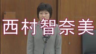 nishimurachinami1