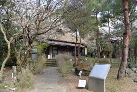 佐渡博物館岩石園1
