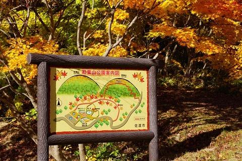 佐渡紅葉山公園5