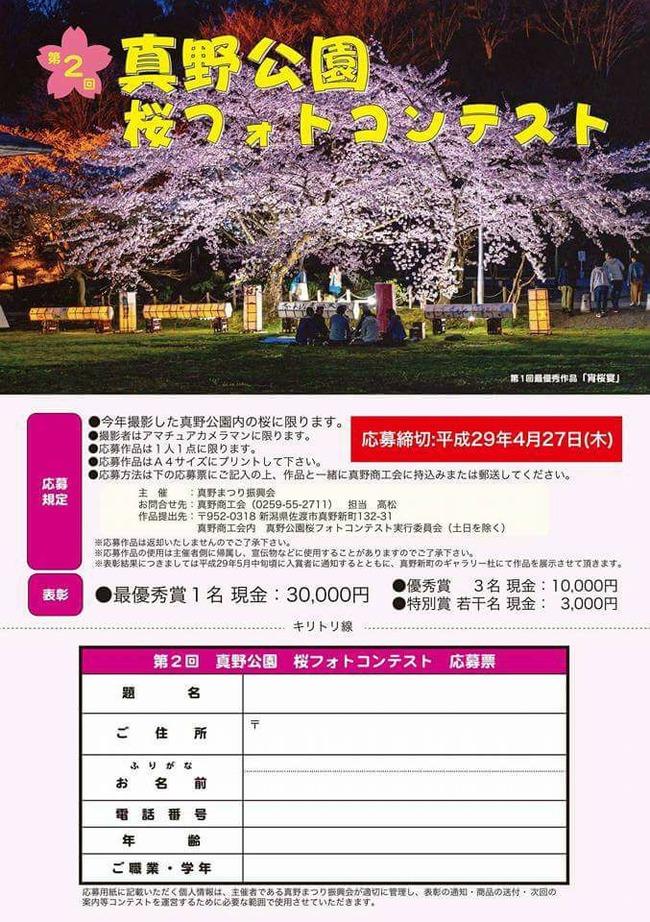 真野公園桜フォトコンテスト