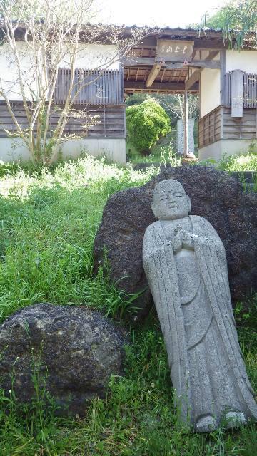 佐渡花の木7