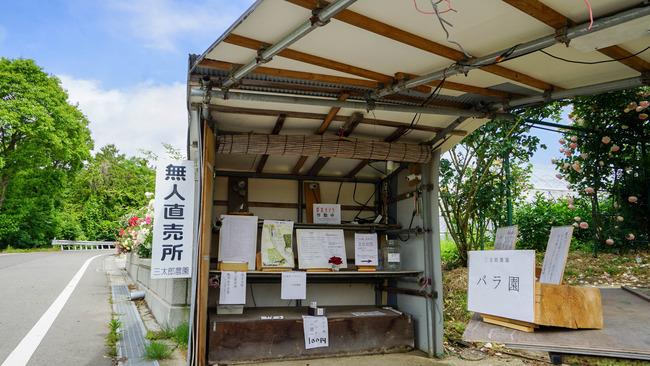 三太郎農園10