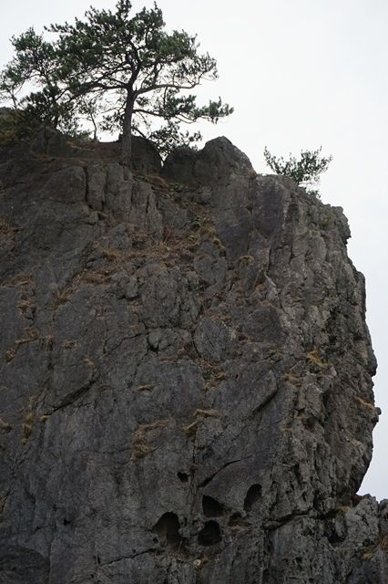 弁慶のはさみ岩11