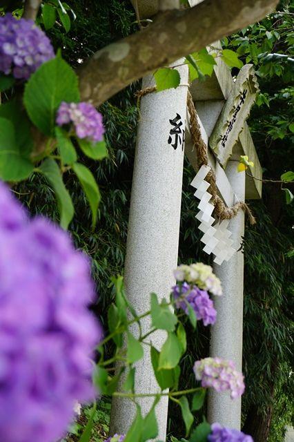 牛尾神社7
