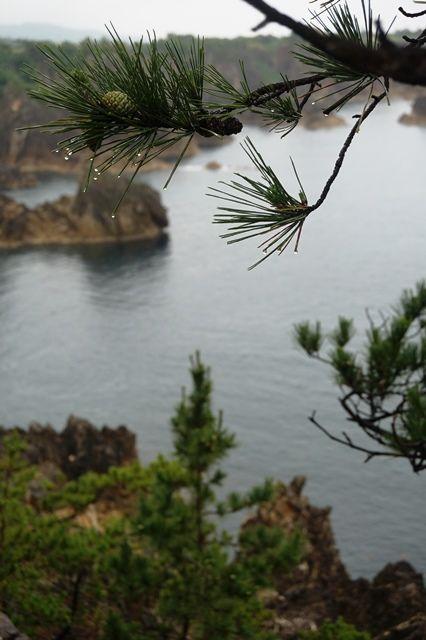 雨の尖閣湾