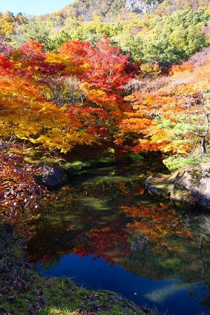 佐渡紅葉山公園1